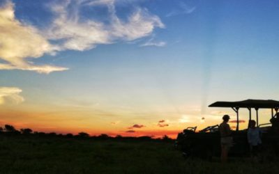 An AfriCamps Glamping Safari in Pongola Game Reserve