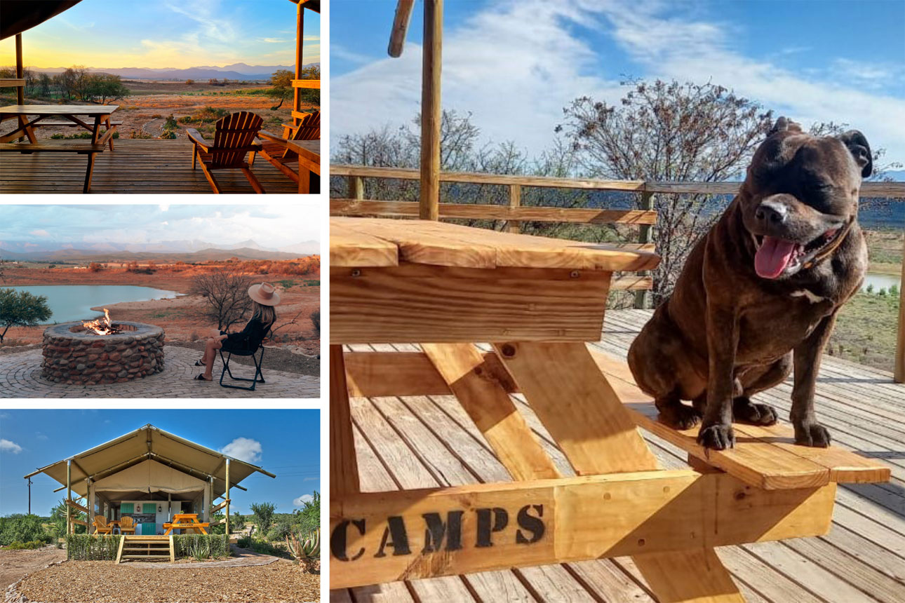 glamping south africa pet friendly accommodation