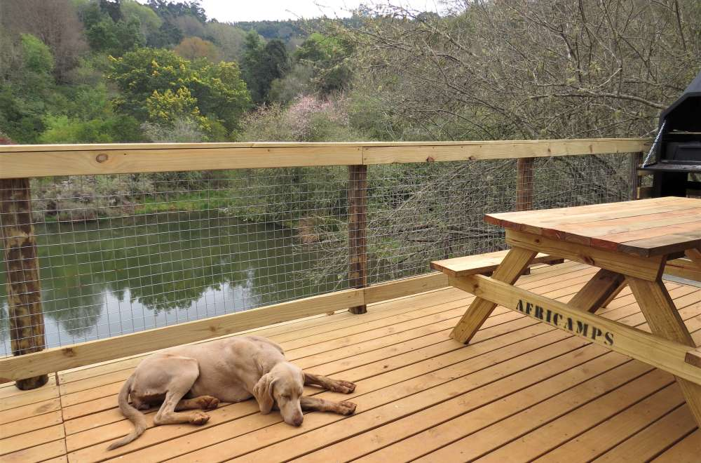 africamps magoebaskloof boutique glamping limpopo south africa (10)