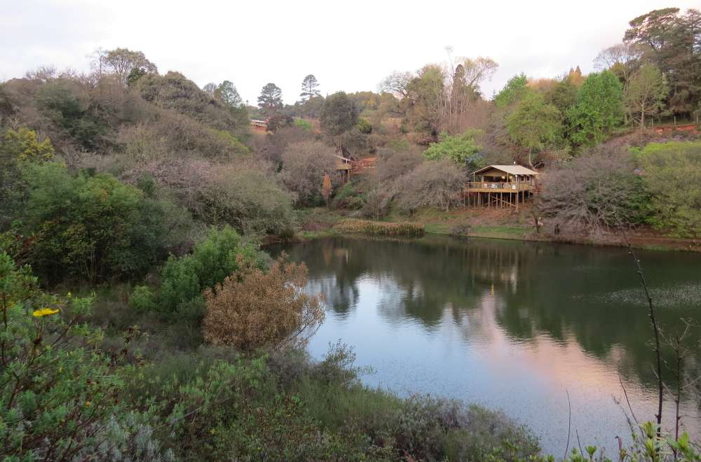 africamps magoebaskloof boutique glamping limpopo south africa (11)