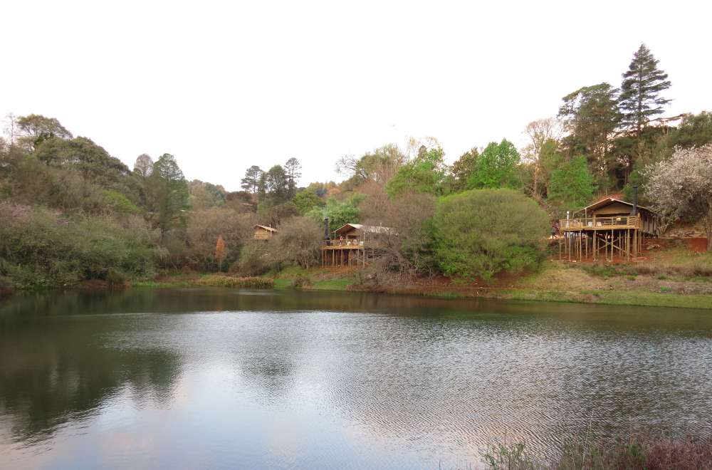africamps magoebaskloof boutique glamping limpopo south africa (5)