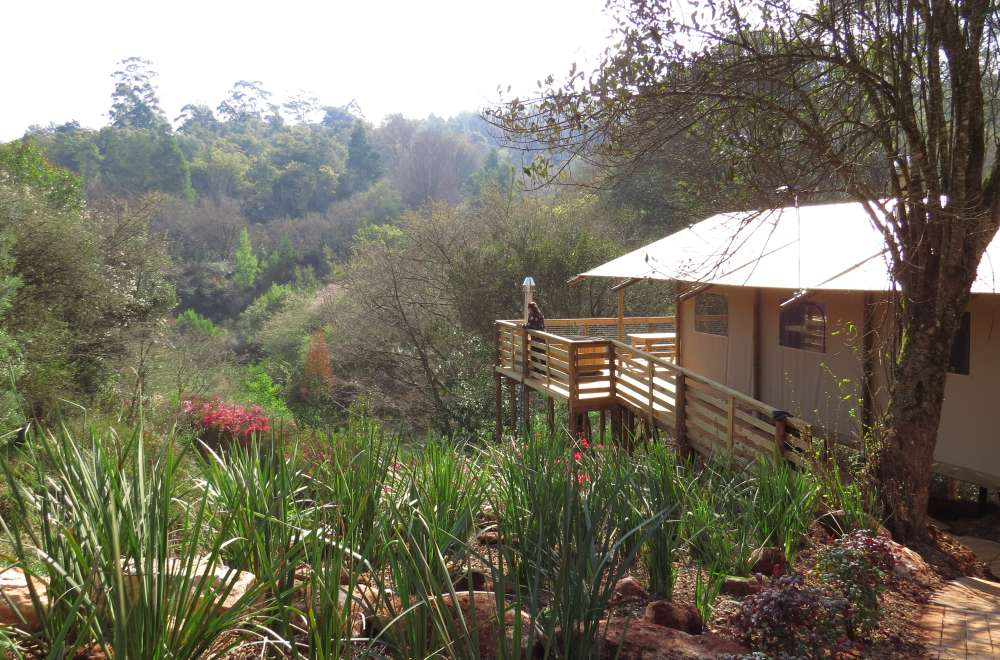 africamps magoebaskloof boutique glamping limpopo south africa (7)